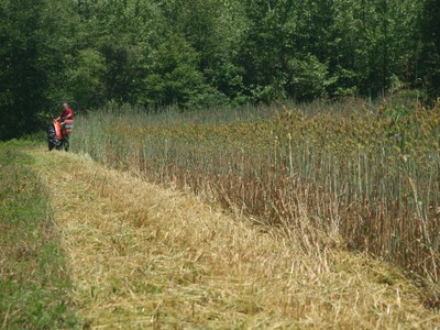 Mowing cover crops