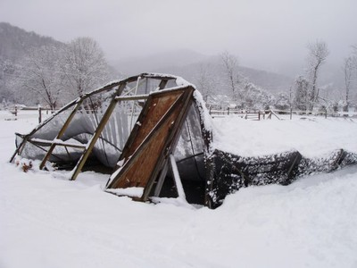 Greenhouse with snow3