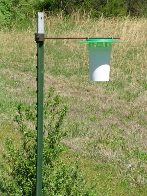 Dry bucket trap for trapping and monitoring pests