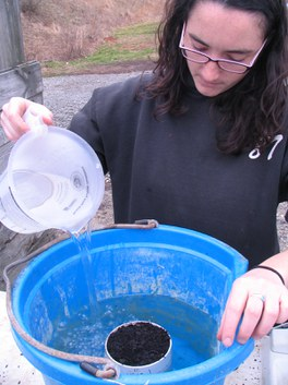 Fill bucket with water to top of cyclinder to fully saturate substrate