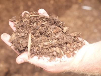 Pine bark based substrate