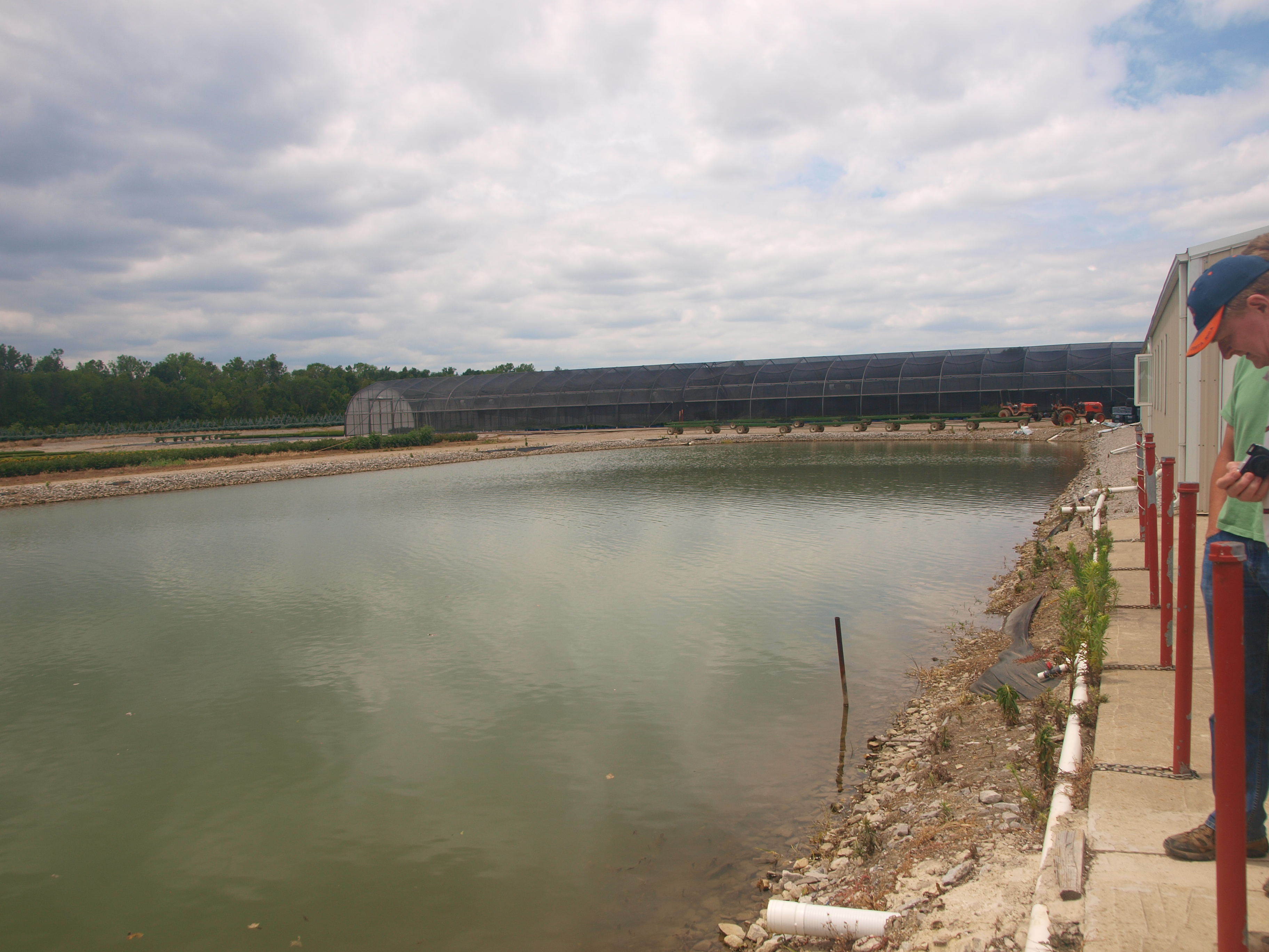 Runoff and rentention ponds used for irrigation